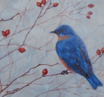Bluebird and Rosehips