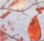 Cardinals and Crabapples