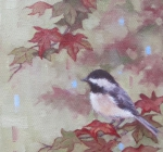 Chickadees and Summer Maple