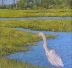 MarshWatch