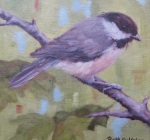 Summer Chickadee