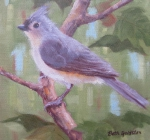 Summer Titmouse