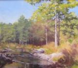 Pinewood Stream