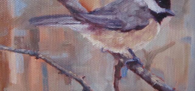 Carolina-Chickadee